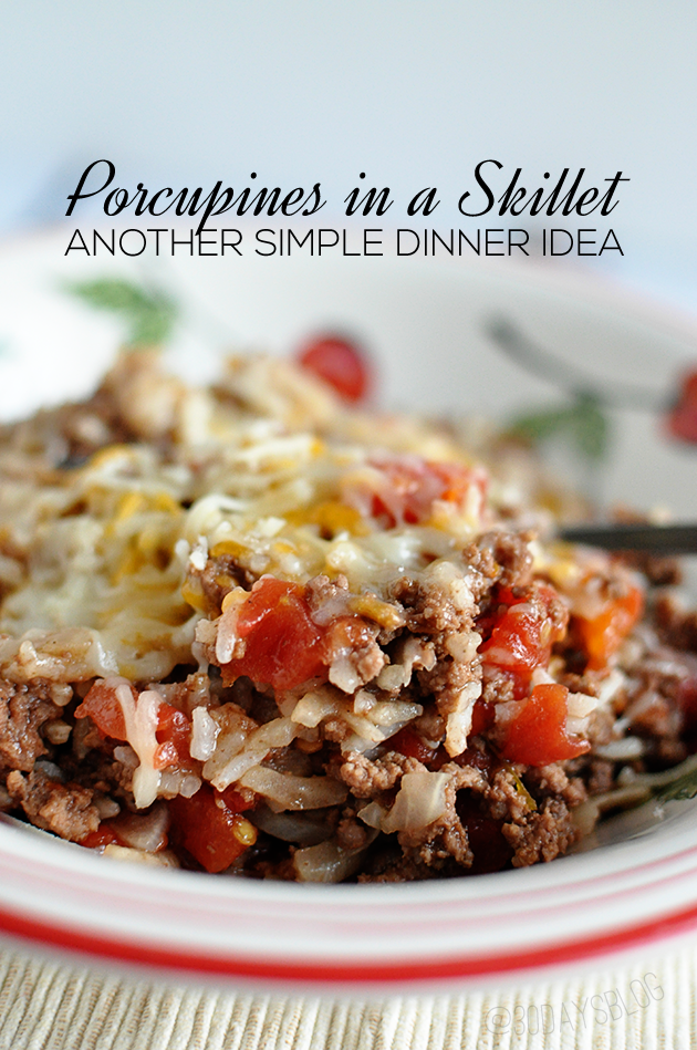 Check out Porcupines in a Skillet Its so easy to make Soups