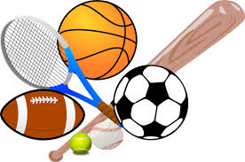 sport google definition an activity involving physical exertion