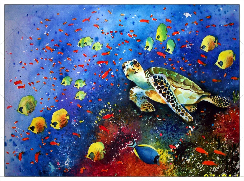 Arrecife de coral, tortuga marina - Liliana