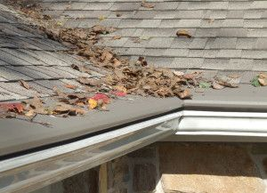 Roof Cleaning Service Vancouver Wa Northwest Roof Maintenance Gutter Guard Gutter Protection Seamless Gutters
