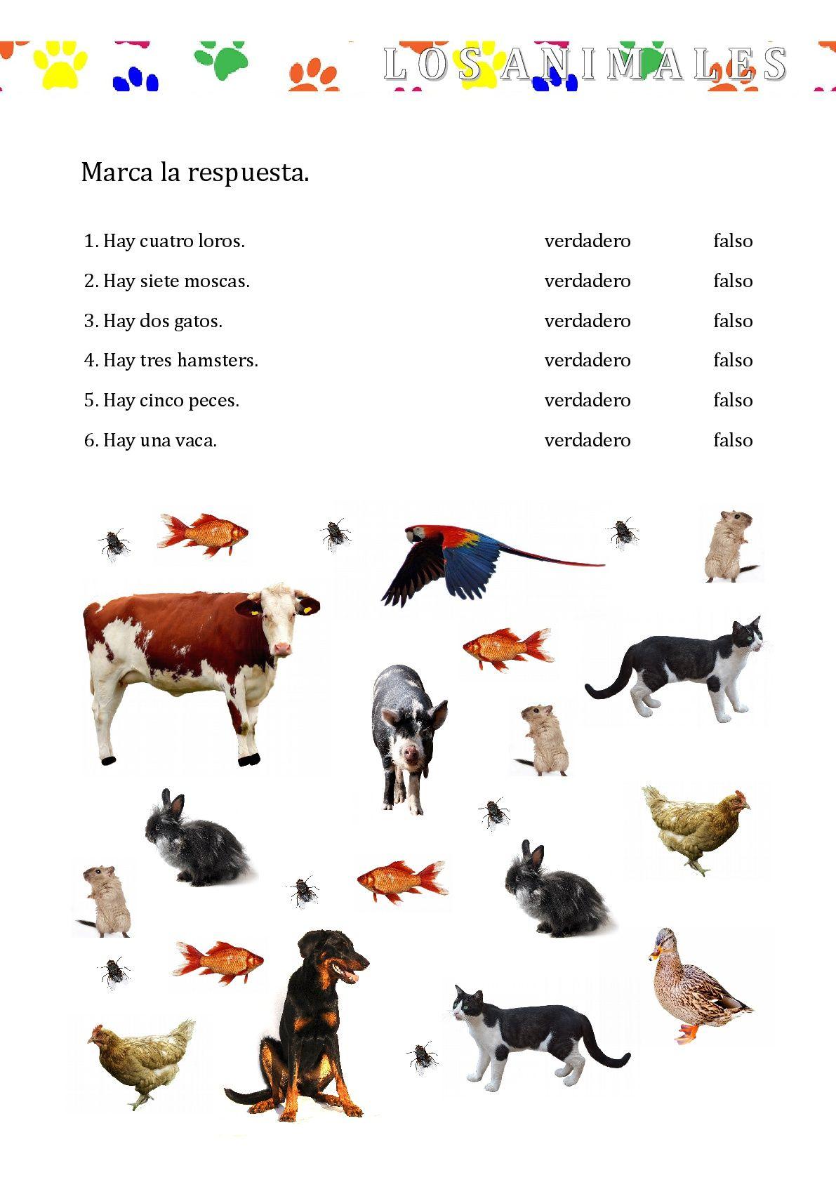 Pin By Kasia Koz Owska On Spanish For Kids