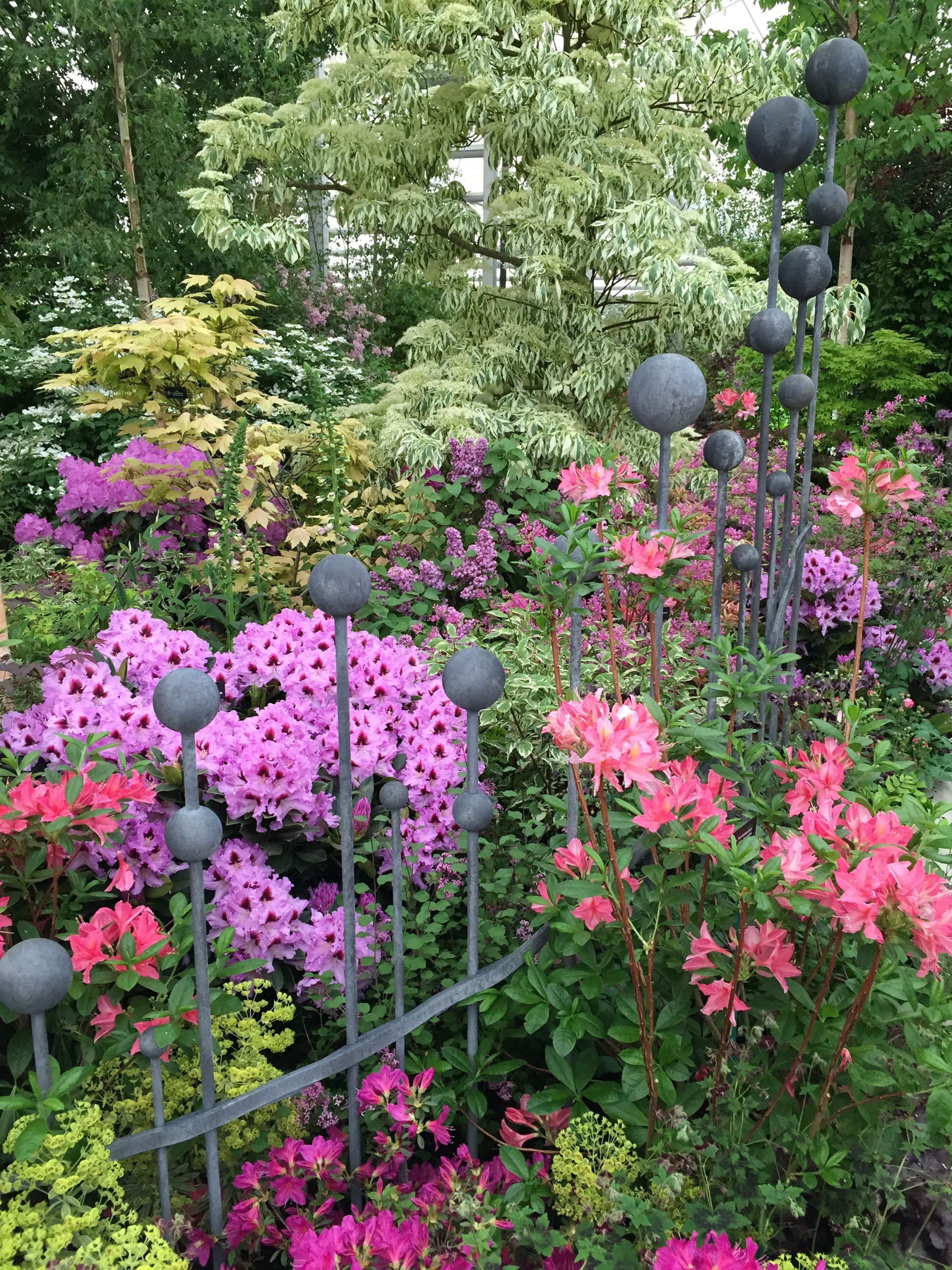 Hilliers Chelsea Flower Show 2015 The Dream Ticket