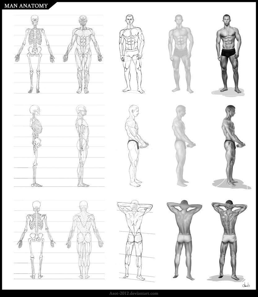 I want to draw people! So, I begin to study anatomy