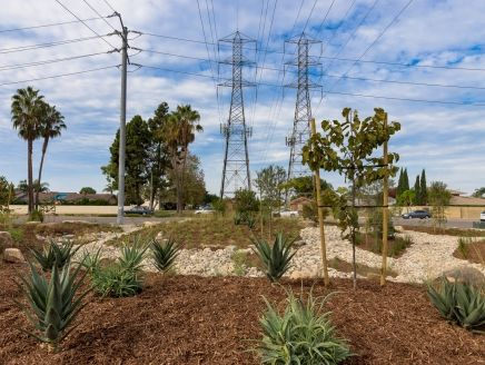 SCE's Hamilton substation landscaping is now drought-tolerant and designed to reduce water runoff and pollutants.