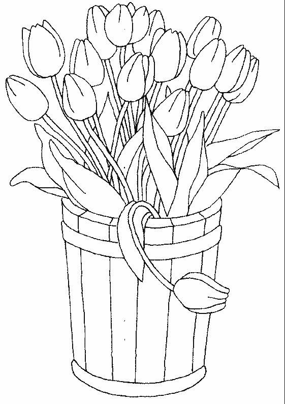 Tulips Coloring Page Flower Coloring Pages Coloring Pages