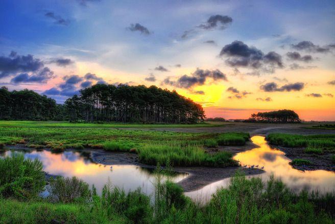 Chincoteague & Assateague Islands-Virginia/Maryland