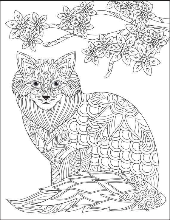 Cat Stress Relieving Designs Patterns Adult By LiltColoringBooks ColoringColoring BooksColoring