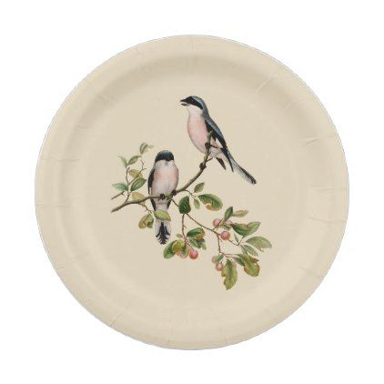 Vintage Pretty Birds on Beige Paper Plate  sc 1 st  Pinterest & Vintage Pretty Birds on Beige Paper Plate | Pretty birds