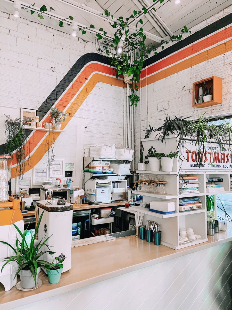 Java Cats Cafe Is Now the Cutest, Cuddliest Coffee Shop in