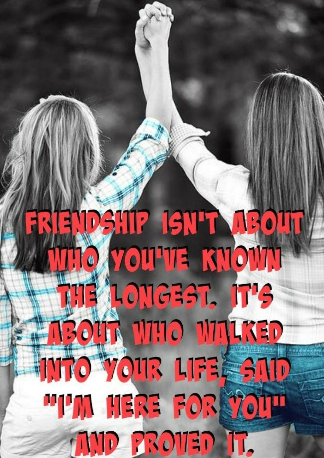Yep The First Friend I Ever Had After I Moved Really Isn T My
