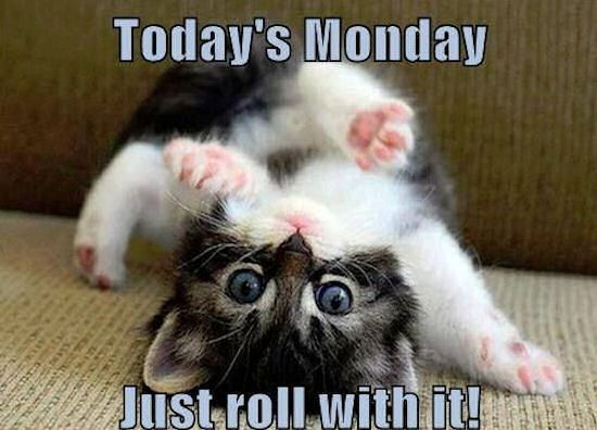 Today is Monday just roll with it #mondayquotes # ...