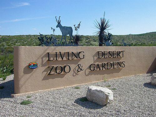 ba72fc2f77b51c09b4214d11c5222c29 - The Living Desert Zoo And Gardens Palm Desert California