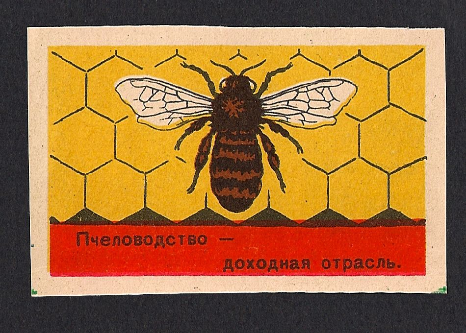 Farming / food production Beekeeping a profitable