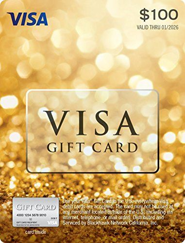 Nice $100 Visa Gift Card (plus $5.95 Purchase Fee)
