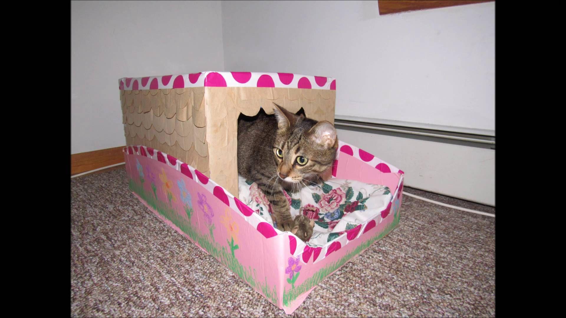 Resultado de imagen para planos para baño de gatos   Mascotas ...