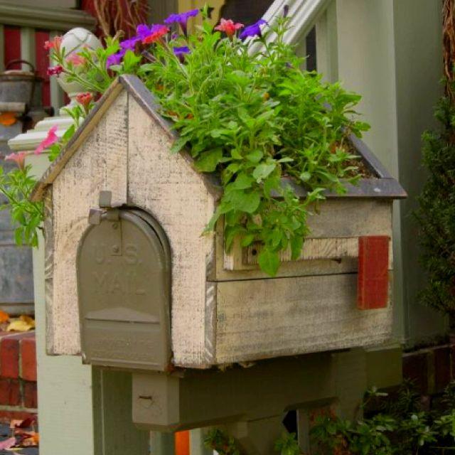 cute mailbox planter