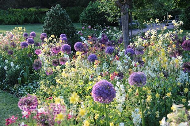 조경 식재에 있는 Ojr님의 핀 조경 정원 및 박람회