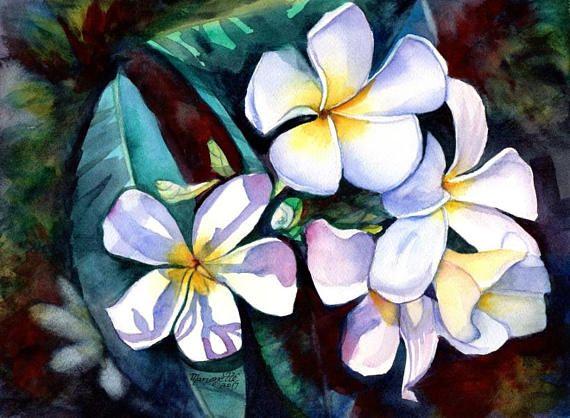 Plumeria Paintings Original Watercolors Tropical Flower Painting