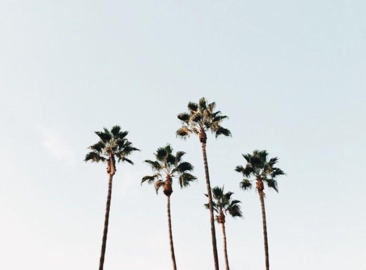 Epingle Par Ranya Arshad Sur Summer Photographie Magnifique Photo Vacances Fond D Ecran Telephone
