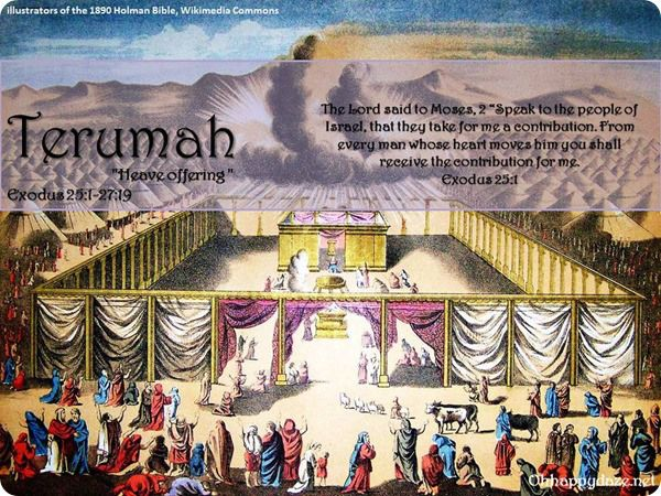 """Torah Portion - """"Terumah"""" This is an accumulation of commentaries, lessons for the kids, crafts, & activities."""