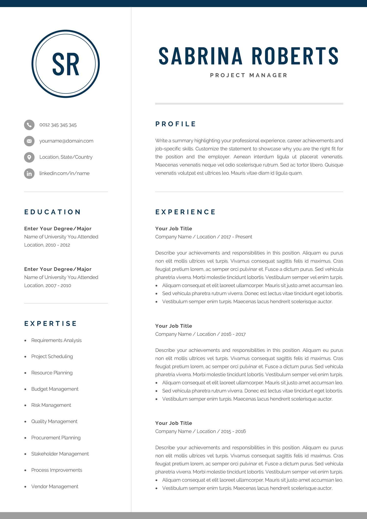Professional Resume Template Modern Manager, Executive