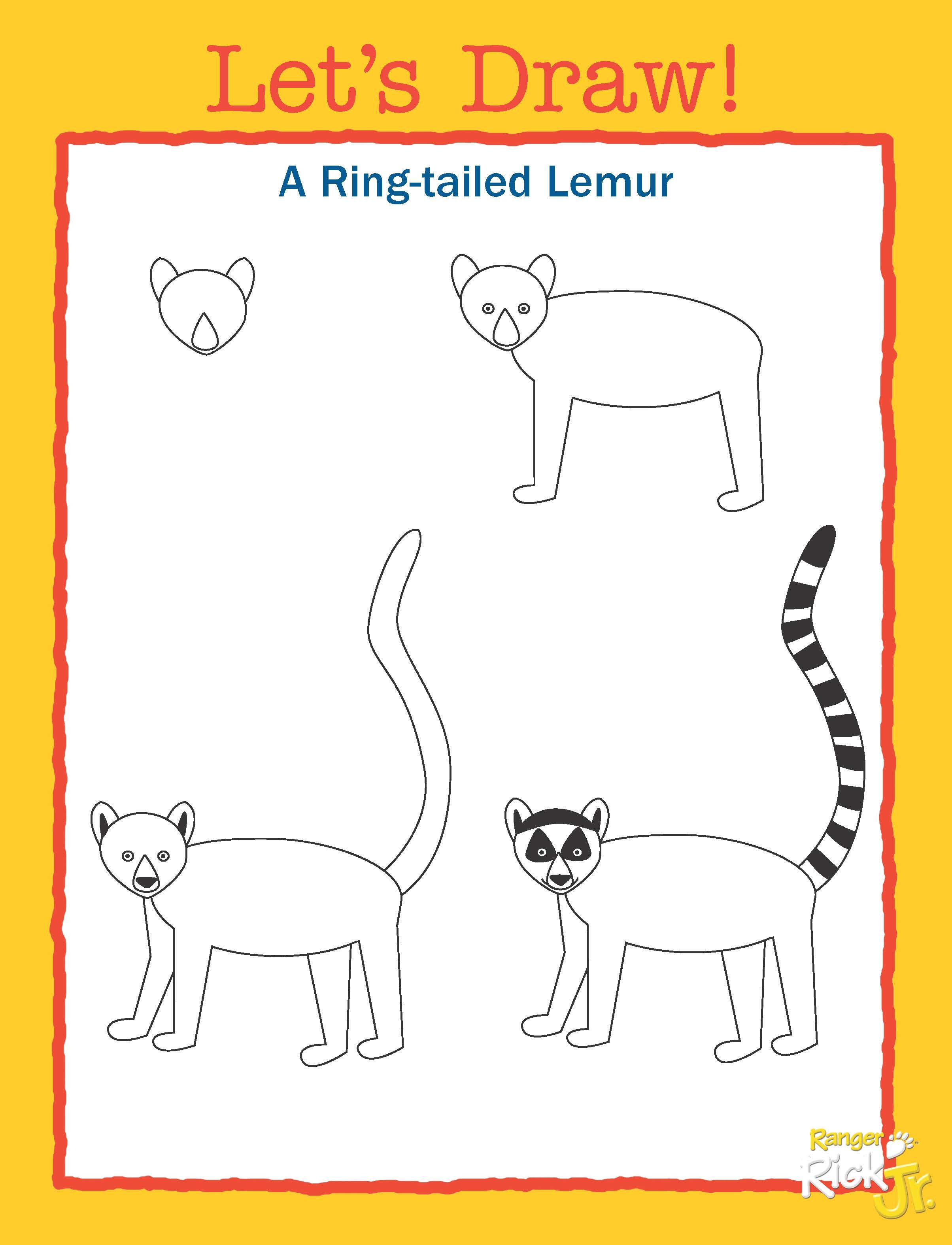 Teach Your Students How To Draw A Ring Tailed Lemur Using