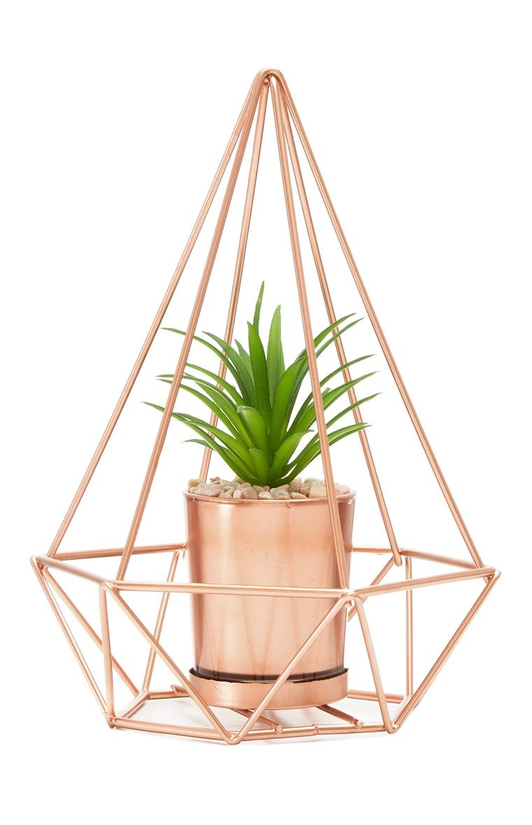 Copper Terrarium Girl Bedroom Decor Rose Gold Decor Copper Room