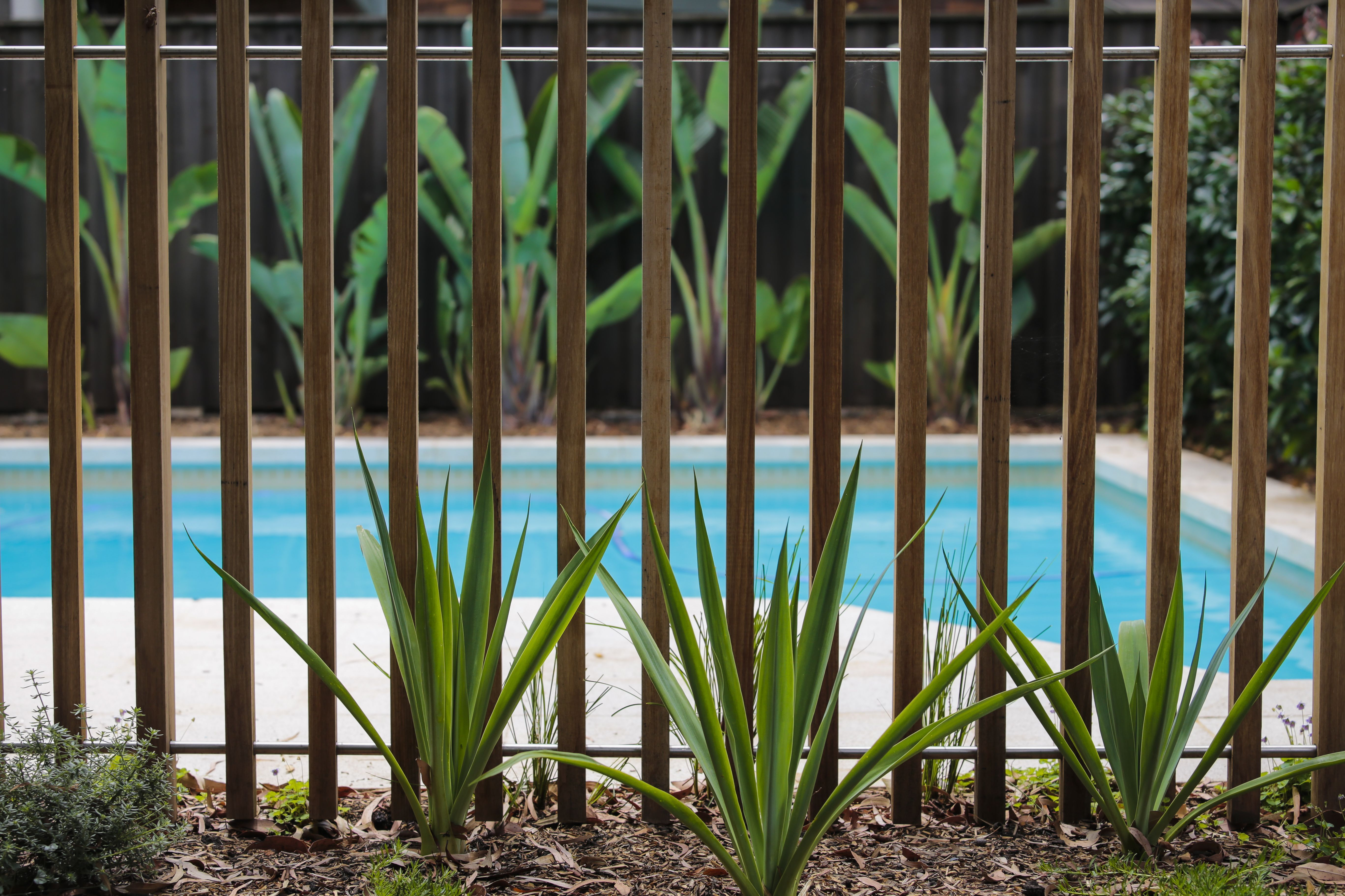 Right Here We Take A Look At 27 Inventive Pool Fence Suggestions For Residential Houses Sharing Some Inn Pool Fence Pool Fencing Landscaping Pool Fence Cost