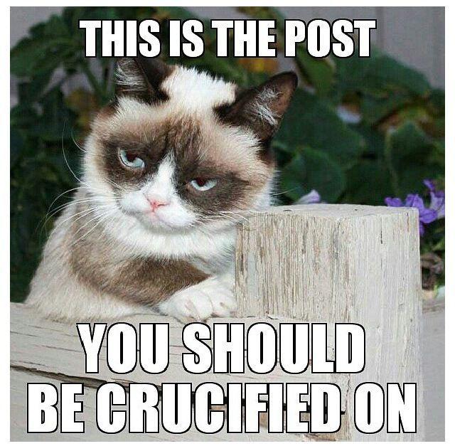 Grumpycat Meme For More Grumpy Cat Stuff Gifts And Meme Visit Www Pinterest Com Erikakaisersot Grumpy Cat Humor Grumpy Cat Quotes Grumpy Cat Meme