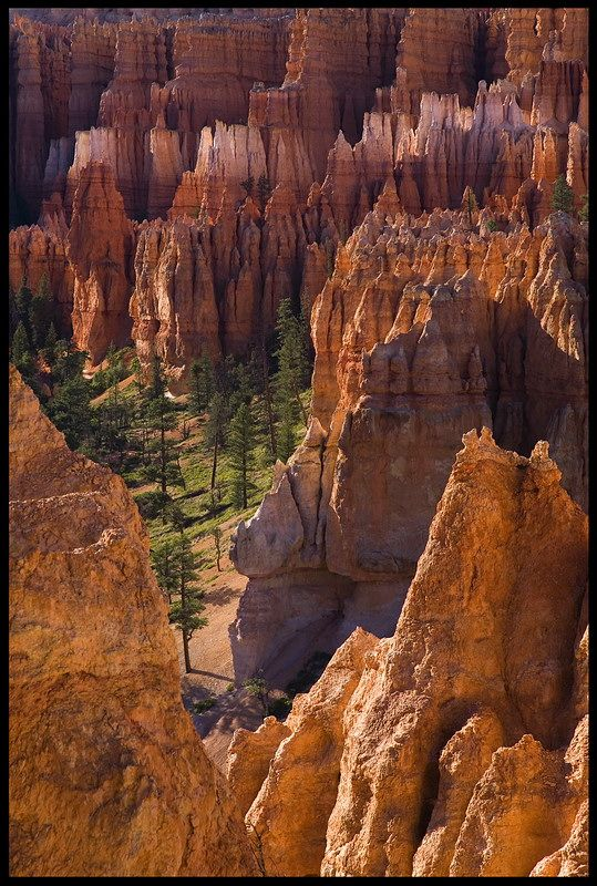 Bryce Canyon - Bryce Canyon, Utah