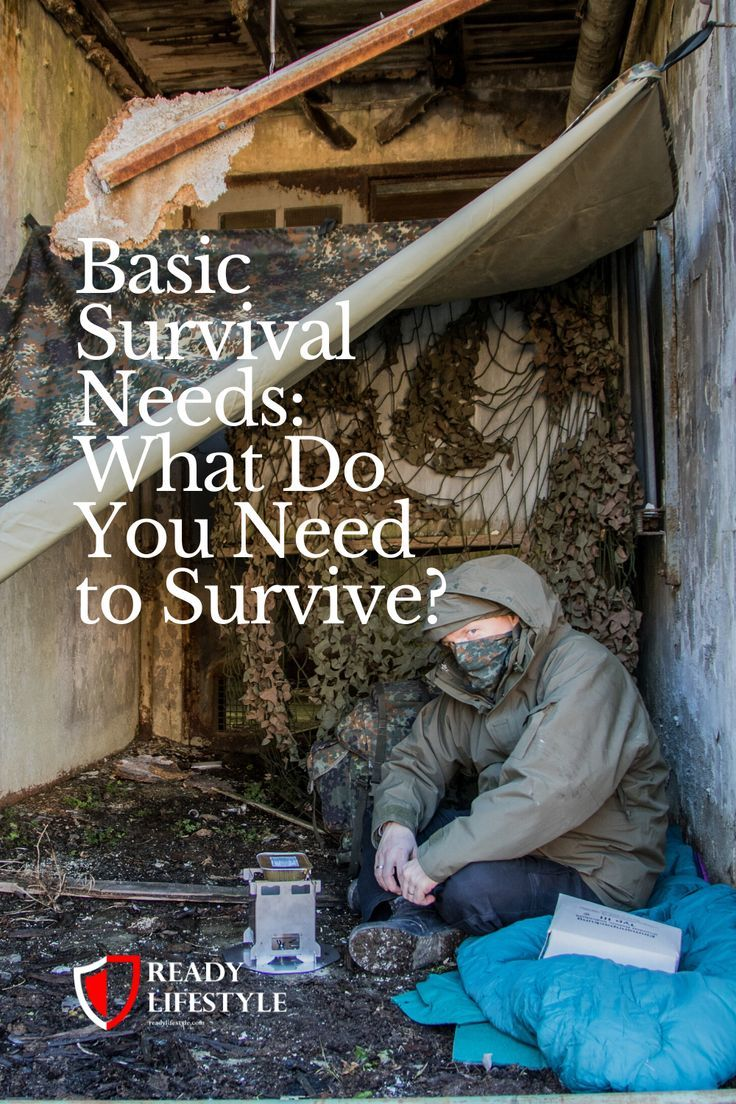 Basic survival needs what do you need to survive in 2020