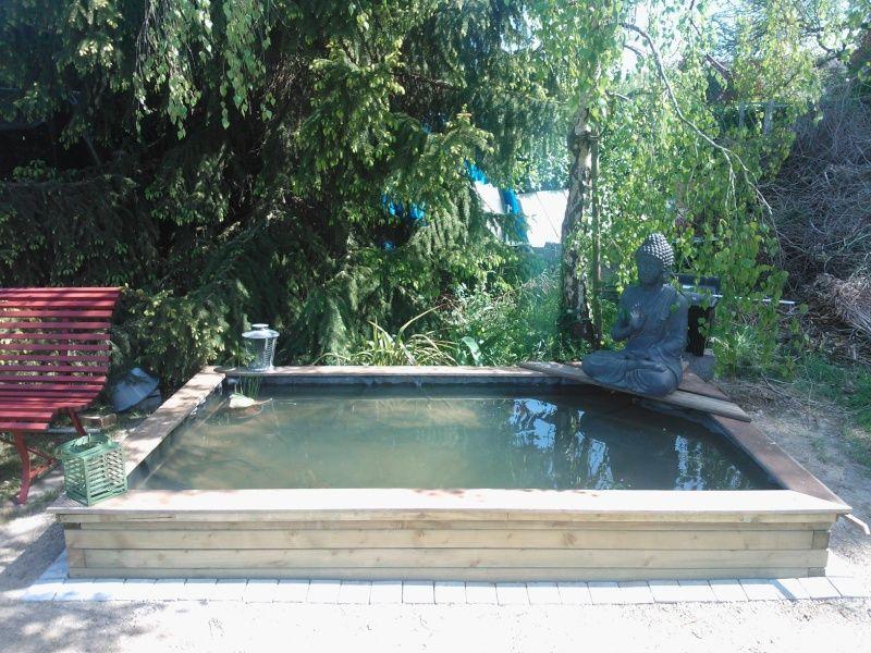 bassin poisson semi enterré - Recherche Google   Bassin   Pinterest ...