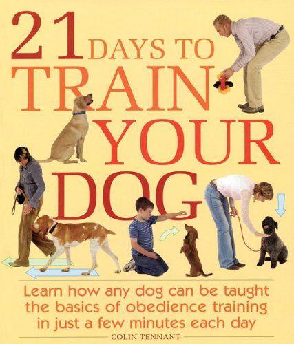 How To Learn Dog Training Training Your Dog Dog Training Tips