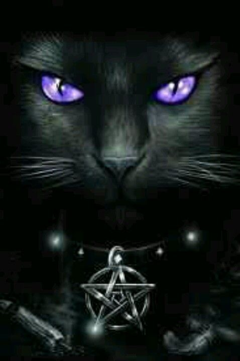 Cute Cats Deviantart Wallpaper Pagan Wiccan Another Killer Piece Of Art Love It