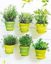 Gartendeko selber machen - Lilly Living - #Gartendeko #Lilly #living #machen #selber #gartendekoselbermachen