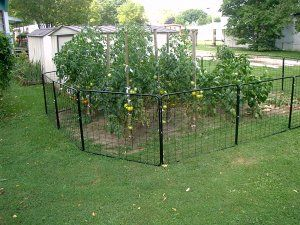 17 Best 1000 images about Vegetable Garden Fence Ideas on Pinterest