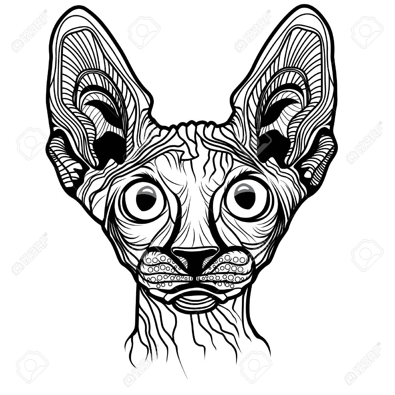 Shirt design sketches