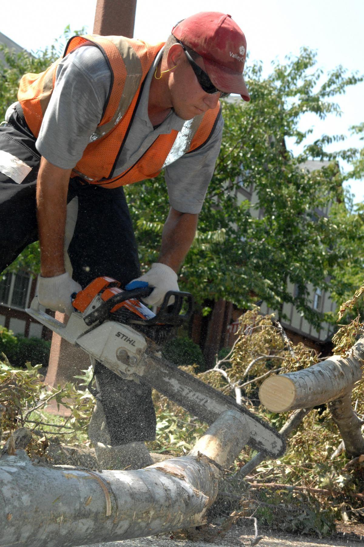 Backyard Landscaping Information And Tips Mini Zen Garden Landscape Maintenance