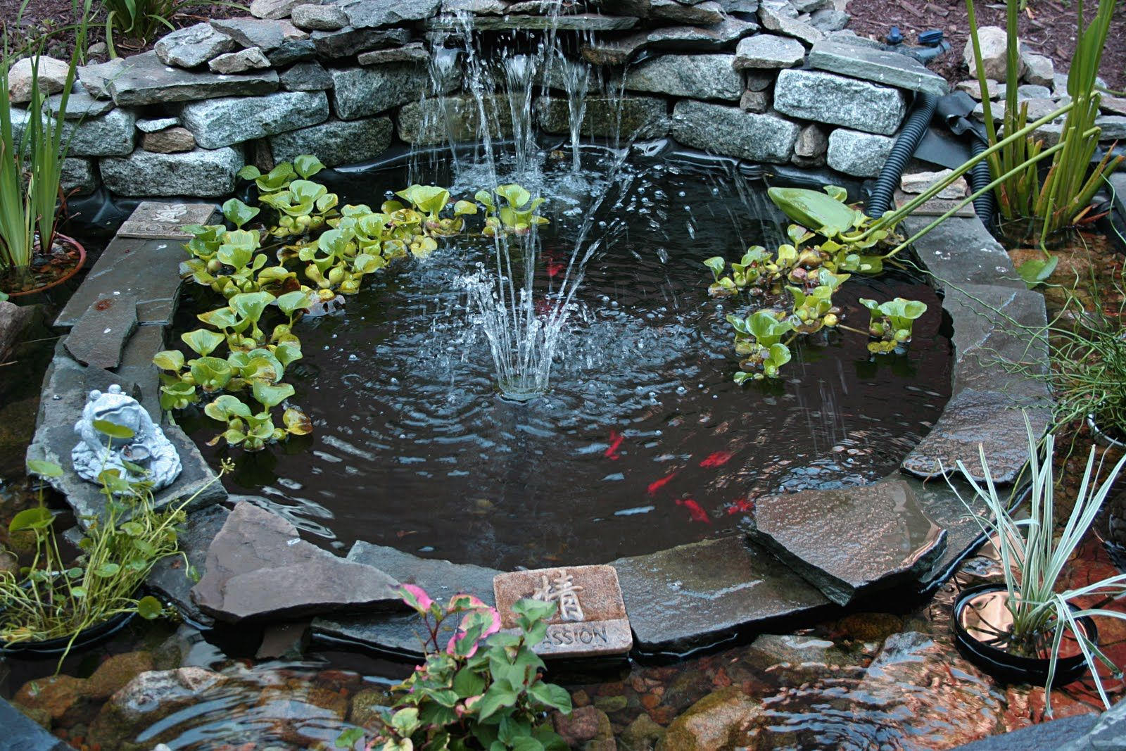 Decorations interesting gray white ornate rock with for Outdoor goldfish pond ideas