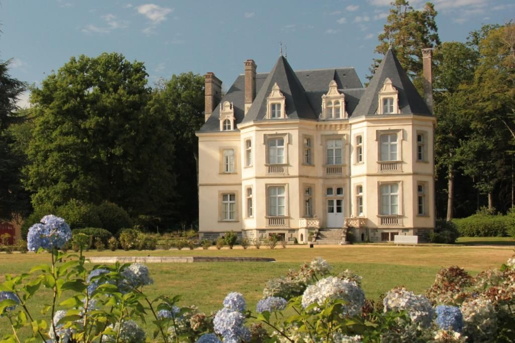 French castle for sale - french property for sale - property in france