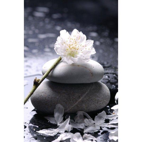 Images populaires zen gratuites art pinterest populaire zen et gratuit - Image zen a imprimer ...