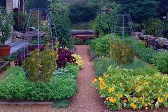 For the vegetable patch