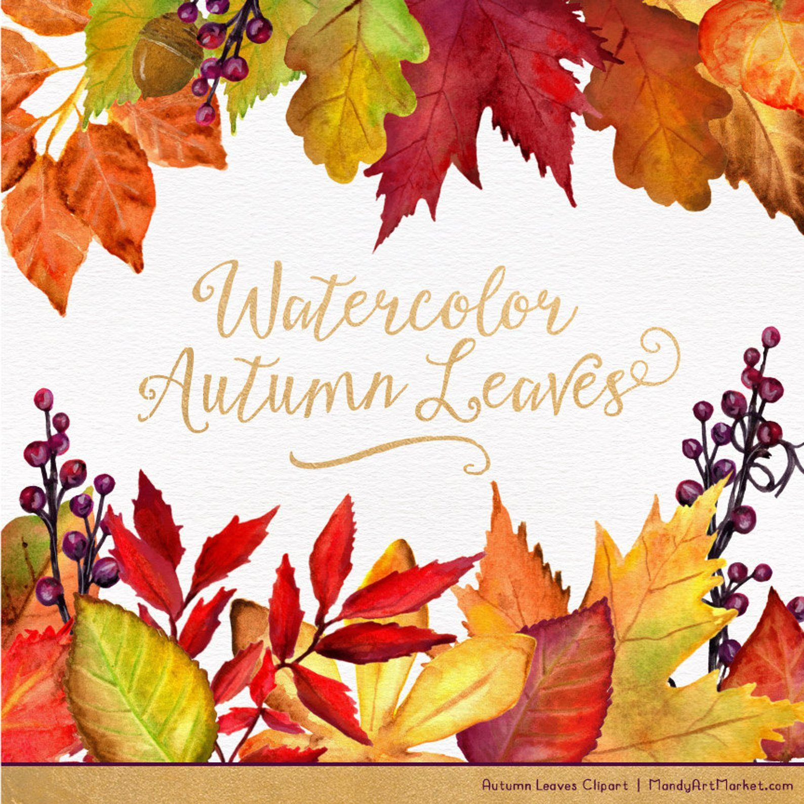 Watercolor Autumn Leaves Branches Clipart Watercolor Clipart