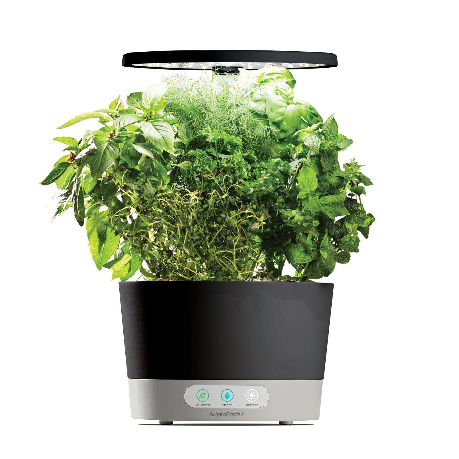 Aerogarden Pods Home Depot: AeroGarden Harvest 360 Hydroponic Garden System Black In