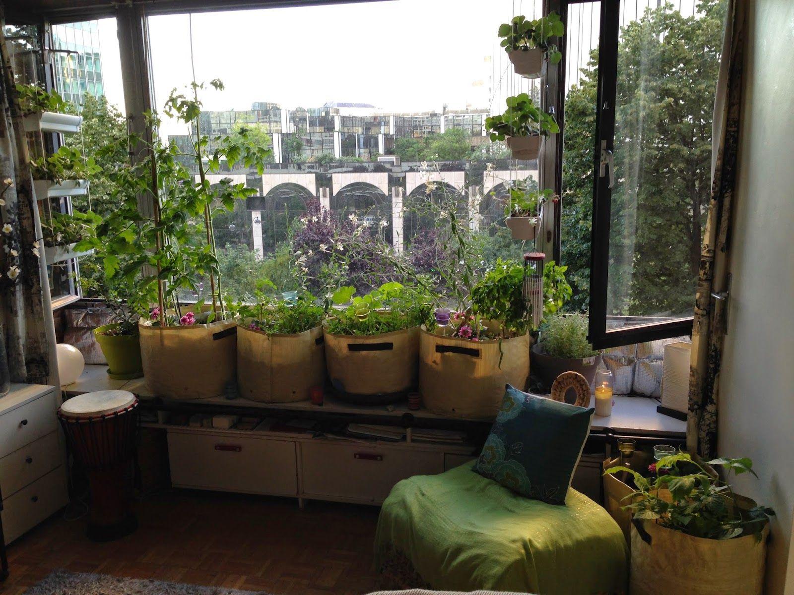 potager int rieur appartement recherche google plantes d 39 int rieur potager urbain. Black Bedroom Furniture Sets. Home Design Ideas