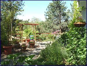 Black Oak Cabin Julian Ca Garden Layout Garden Design Pergola