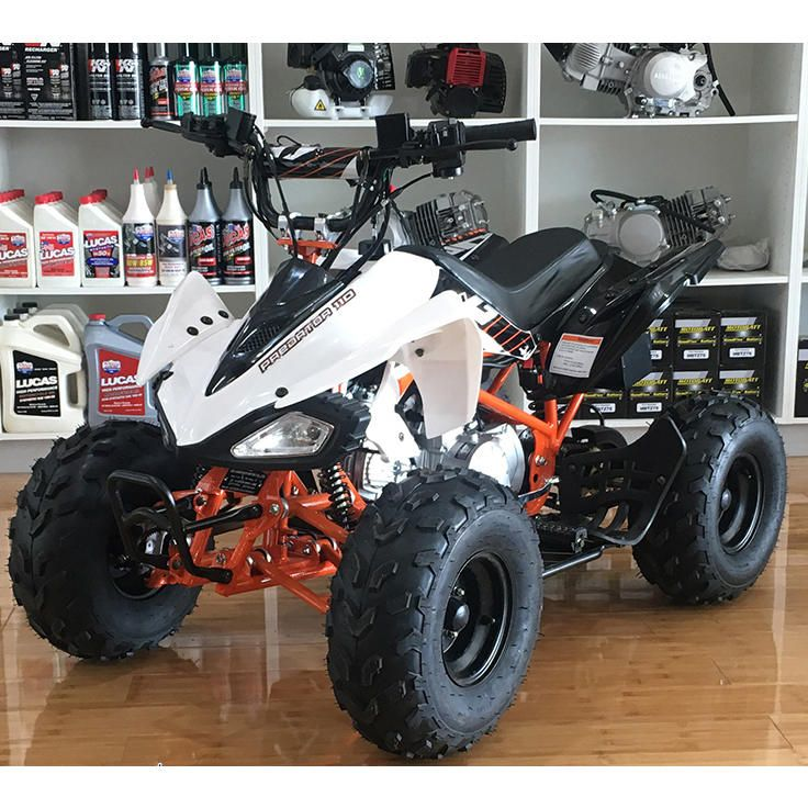 Assassin Predator Kids Atv 110cc Quad Dirt Pit Bike Gokart 4 Wheeler Buggy Kids Atv Quad Bike Go Kart