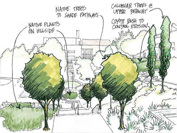 Risultati Immagini Per Tree Drawing Architecture