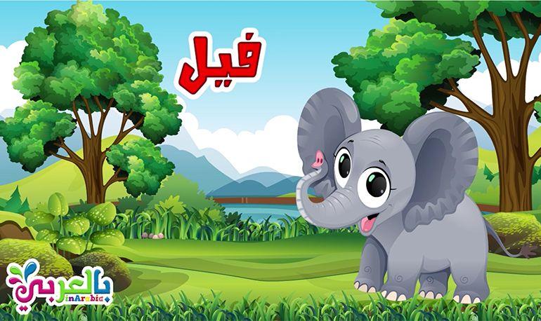 معلومات عن الفيل للاطفال وحياته حيوانات الغابة Bic