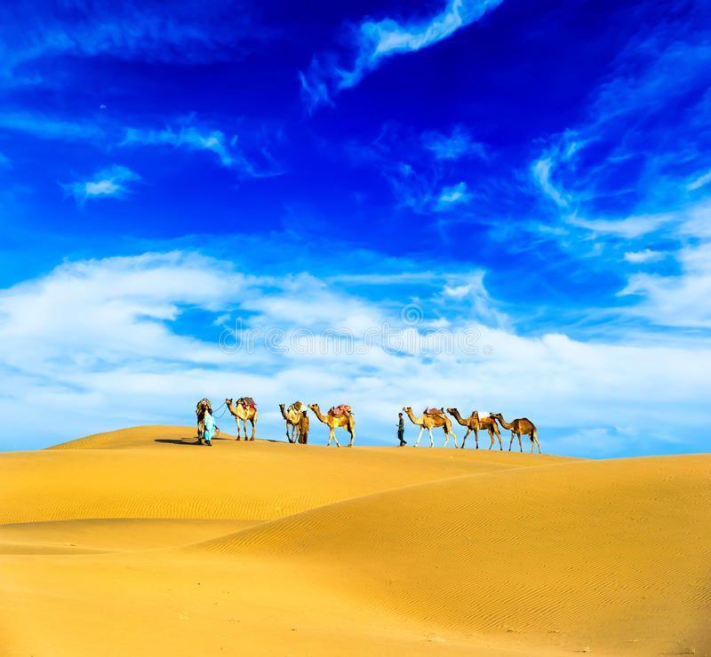 Camels Desert Landscape Adventure Travel Background Aff Landscape Desert Camels Background Travel Ad Landscape Desert Landscaping Adventure